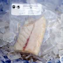 Rockfish - 1 lb. Center Cut Fillet