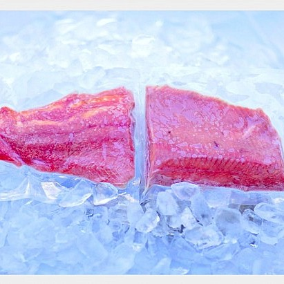 coho-fillets-on-ice-no-filter